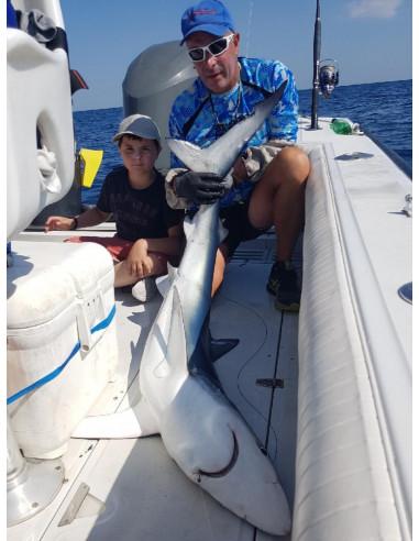 Pêche du requin en Camargue